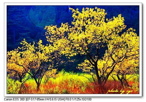 [原创]神州山水(07)山西太原天龙山《天龙八部》 - 自由诗 - 人文历史自然 诗词曲赋杂谈