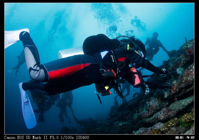 史上最牛的潜水员——十三岁姑娘的初次潜水经历 - 牛筋 - 牛筋的博客