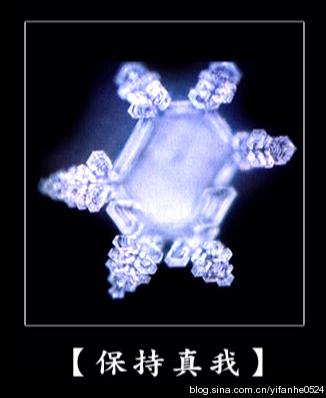 日本江本胜博士水结晶试验图片