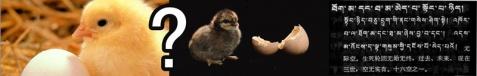 超级辩辩辩01:【先有「佛」还是先有「蛋」?】 - 喇嘛百宝箱 - 喇嘛百宝箱