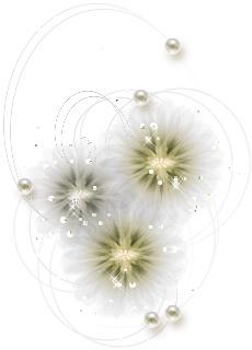 引用 白色素材(二) - 滴墨斋主 - 滴墨斋主的后花园