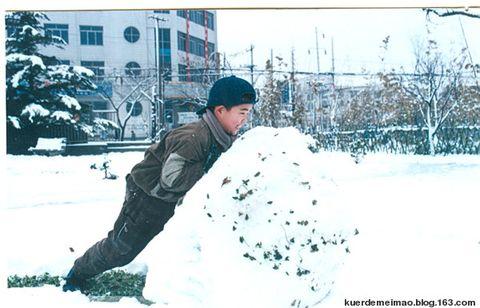 儿子的—下雪了 - 飘叶泣香 - 飘叶泣香