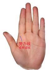 【转发】教你看手纹 - 淡然如是 - 淡然如是的博客家园