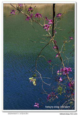 冬日红花湖 - 汝裕有约 -