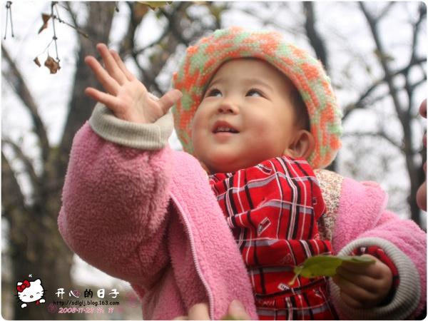 叶子黄了 - 开心 - 开心的日子
