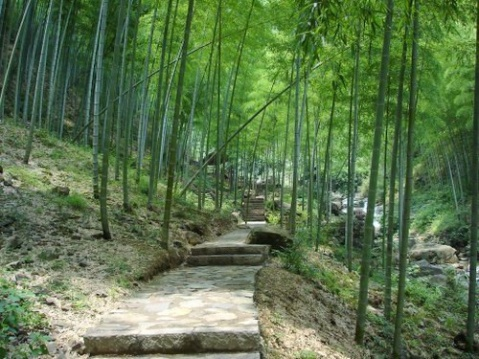 冬景美图 - 黄晓梅 - huangxiaomei的博克