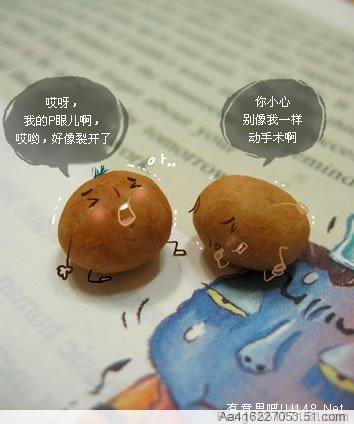 新奇水果搞笑记 超可爱
