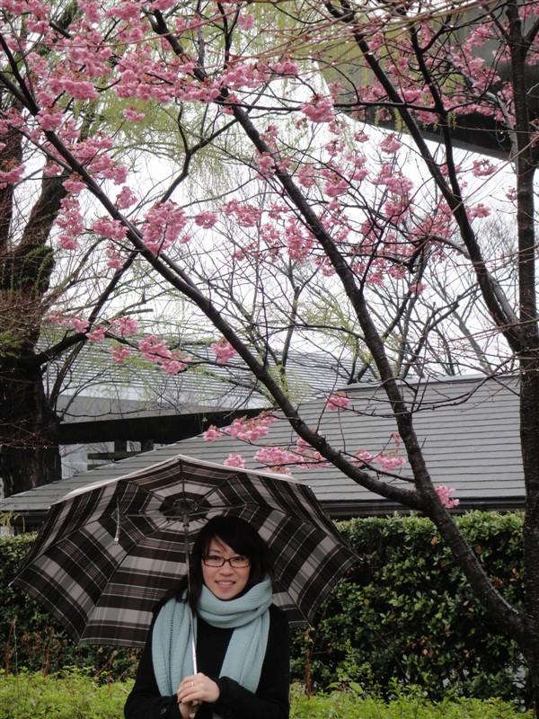 日本妹,好少会见到日本人穿和服,听导游讲日本人系有重要日