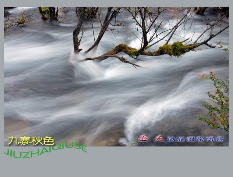 (原摄)九寨秋色之一 - 高山长风 - 亚夫旅游摄影博客
