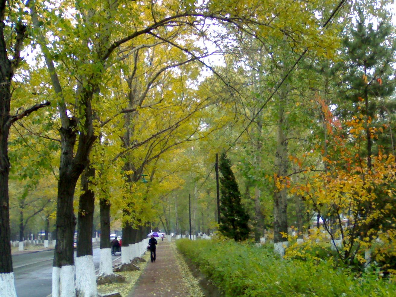 2010年10月11日 - 芬芬 - 小法岱特
