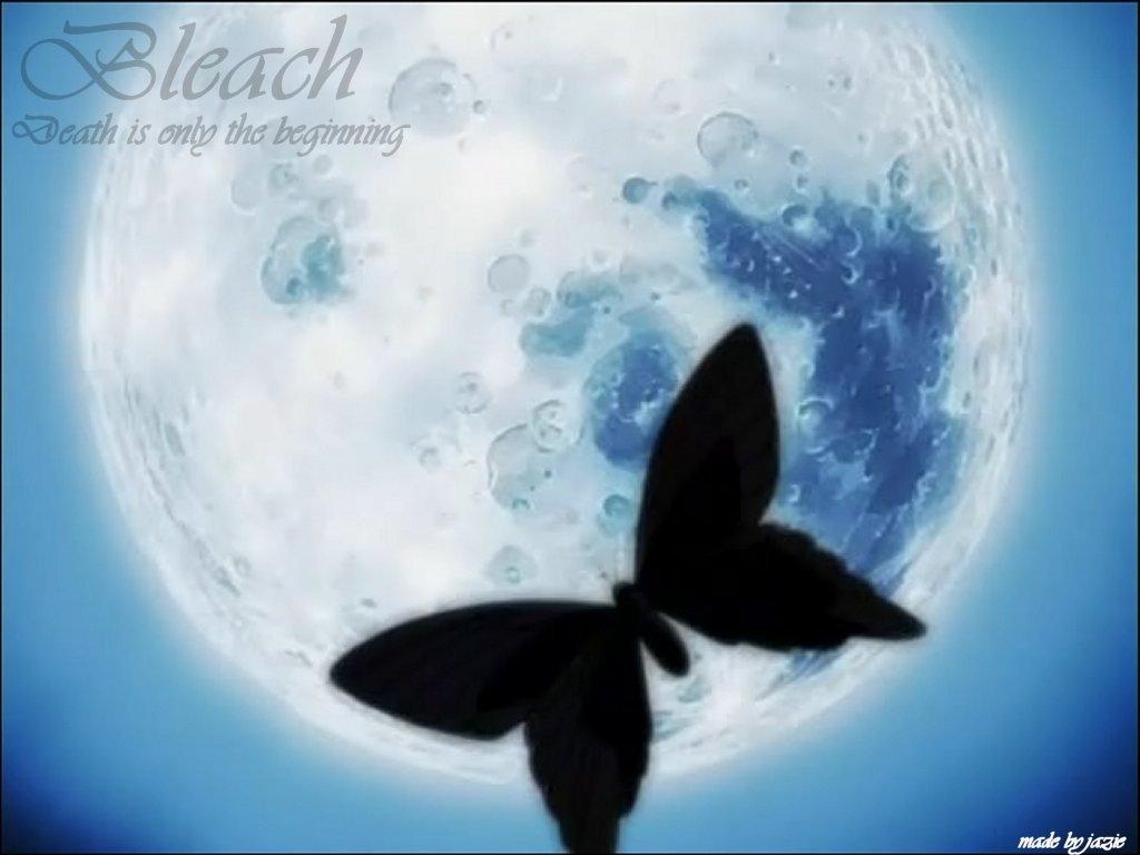 蝴蝶飞不过沧海的原文是什么?
