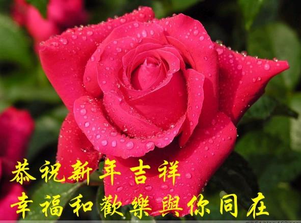 新 年 祝 福 - 高山 - 以真诚交流,用真心交友。