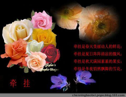 花开花落两由之 - 蝶飞舞 - .