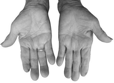 什么样的掌纹会长寿? - 地狱壳子 - 壳子的博客