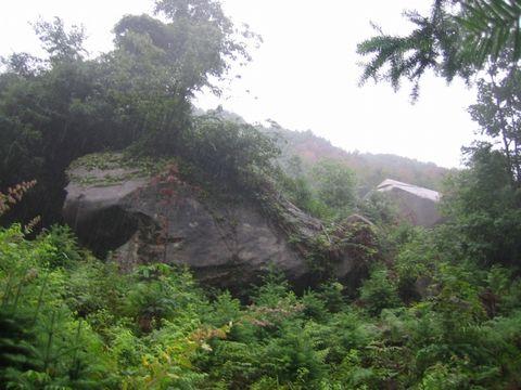 雨中游山(照片) - 江村一老头 - 江村一老头的茅草屋