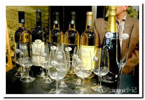 波尔多-葡萄酒之旅(原作) - 婉铱 - 摄于