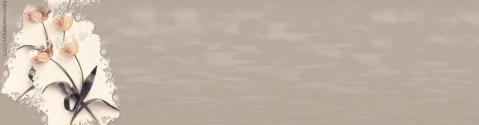 背景图片----顶栏素材 - 儒子牛 - .