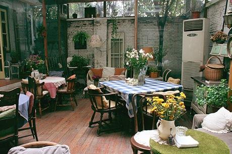小小花园与小小猫 - 夏笳 - 夏天的茄子园