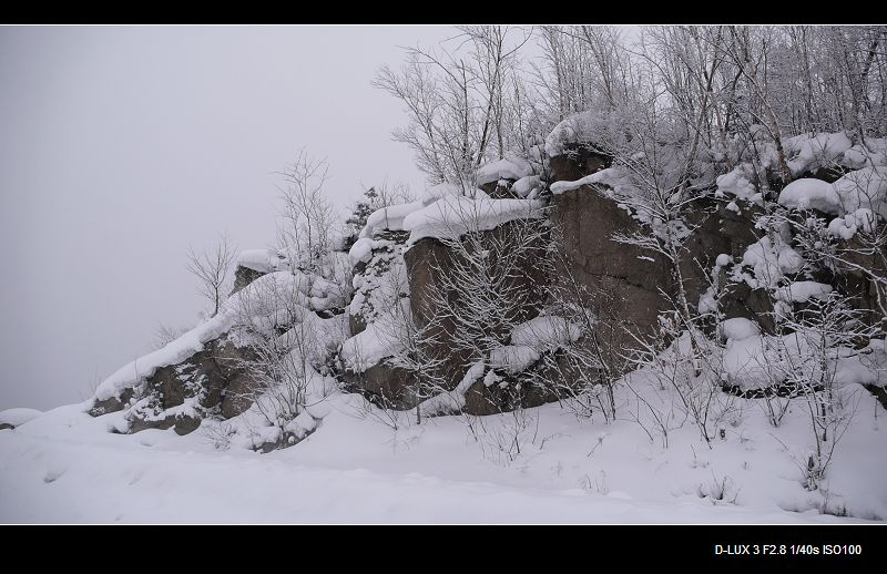 雪乡的路上 - 海阔山遥 - .