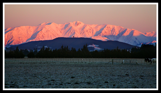 (原摄)新西兰南岛(一)——基督城至福克斯冰河路上 - 照看天下 - 照看天下的博客