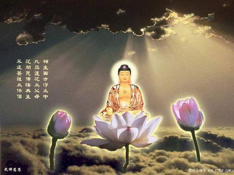 莲上佛(古风) - 紫冰兰 - 莲心苑.紫冰兰