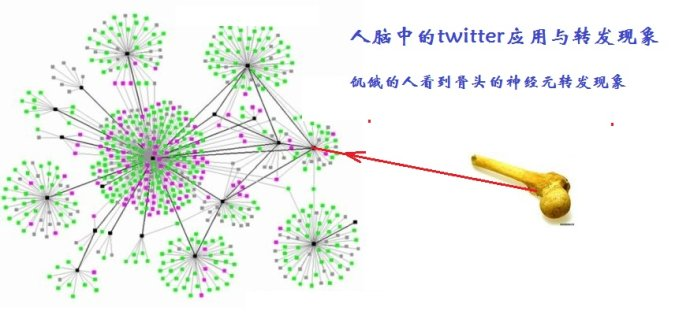 人脑中的twitter应用与转发现象