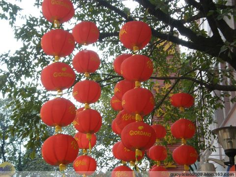 大红灯笼(附照片) - 秋水长天·淼淼 - 秋水长天·淼淼