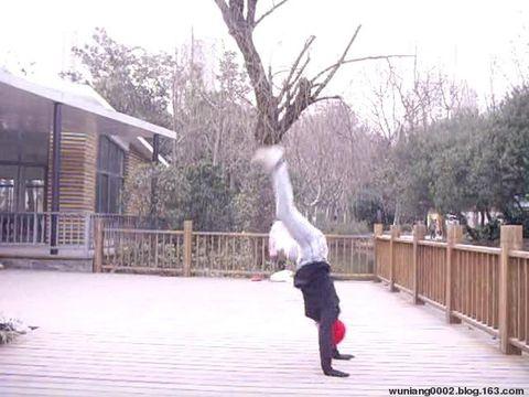 【原创】《舞娘春天的侧手翻》诗歌、视频 - wuniang0002 - 阳光舞娘的空间