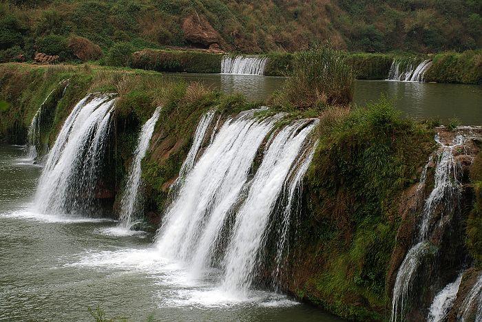 春水流 - 西樱 - 走马观景