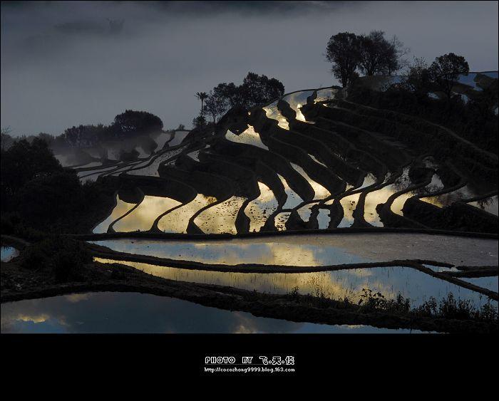 [彩云之南]金色旋律-雾锁元阳(3) - 雨潼 - 飞天侠的摄影视界