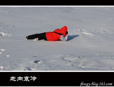 [原]走向寒冷——哈尔滨 - 生有所息 - 生有所息