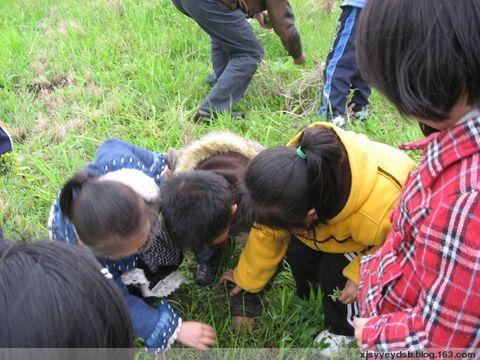 去年的春天 - xjsyyeydsb - 仙居县实验幼儿园小二班