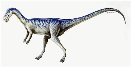 恐龙时代最致命七大物种:霸王龙居首位(图)