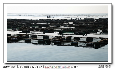 《小岛掠影》(之一) - 海狮 - 海狮de视觉空间
