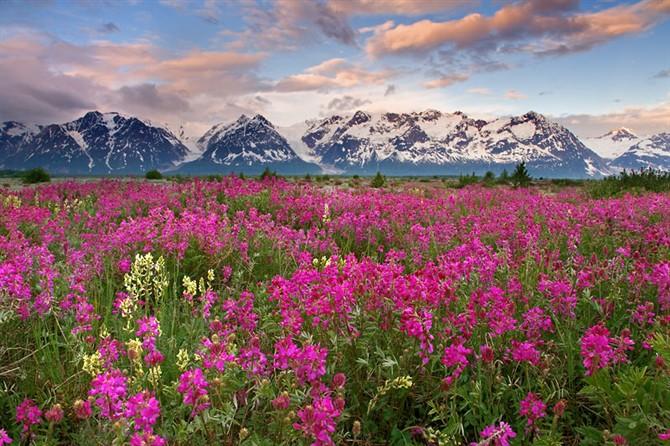 世界上最令人惊叹的景色  - 桃花源 - 桃花源的博客