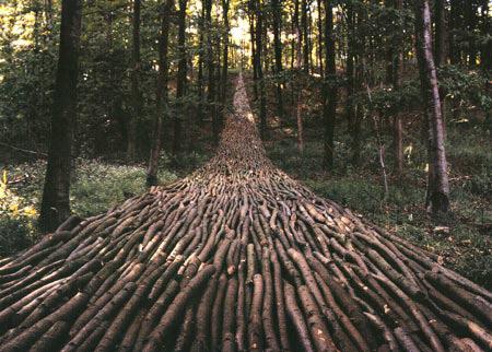 【建筑】惊人的自然建筑 - 连战 - 廉清波