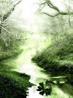 回归理性的沉静  [若瀚] - 若瀚 - 若瀚