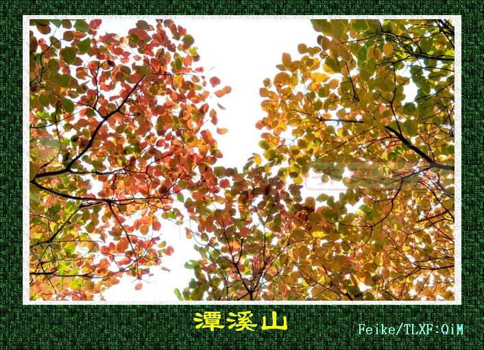 DSC_2039_nEO_IMG.jpg