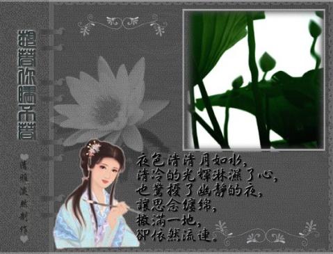 (原创)秋风无意惹相思 - 清雅淡然 - .