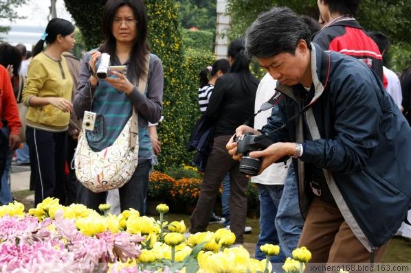 【原创】小榄菊花会(1)相聚在金秋 - 新艺城主 - 菊花艺术芳草地