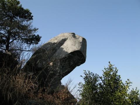 菩提峰(照片) - 江村一老头 - 江村一老头的茅草屋
