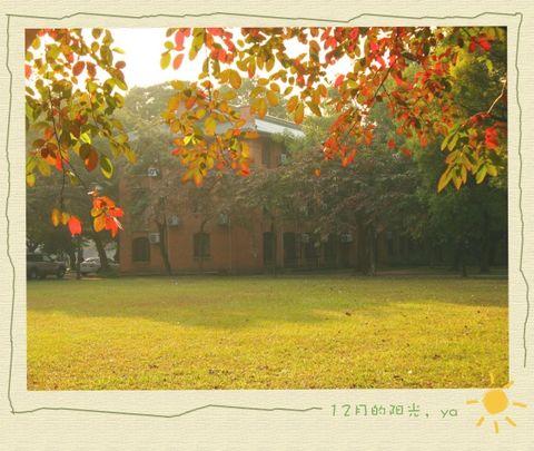 12月的阳光~ - jenia - 绿啫哩