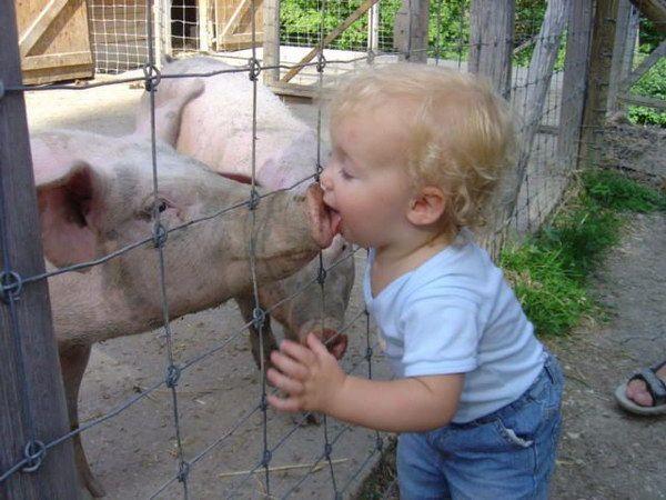 会让妈妈们疯掉的孩子 o(∩_∩)o - 表哥的日志 - 网易博客 - 沉默的爱 - 沉默的爱