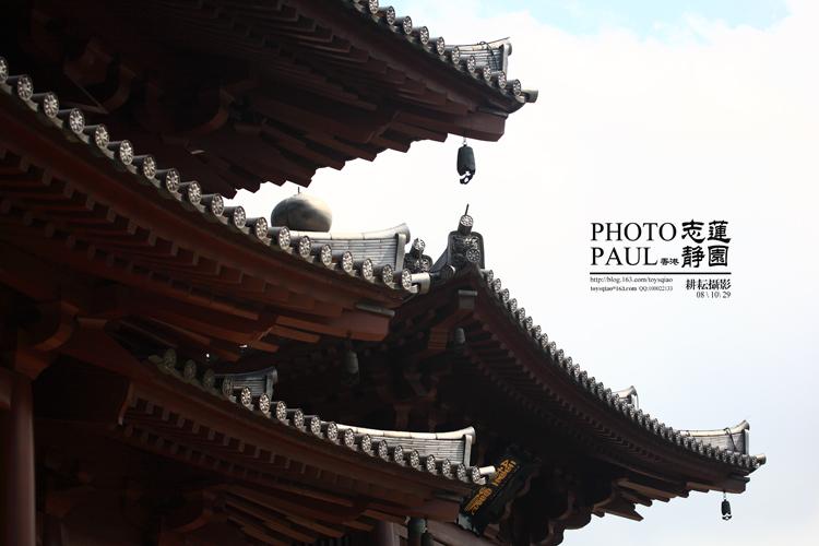 香港志莲静园[原创] - 耕耘 - 耕耘摄影 PHOTO PAUL