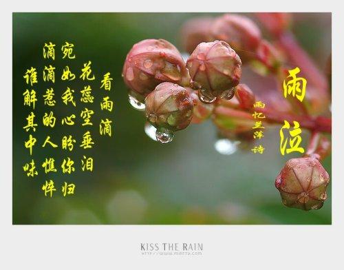 《雨忆兰萍诗词集锦》————雨泣  望 - 雨忆兰萍 - 网易雨忆兰萍的博客