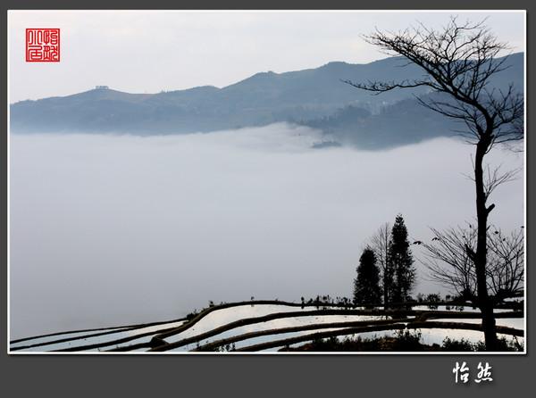 那云·那雾·那梯田 - 怡然 - 怡然小居
