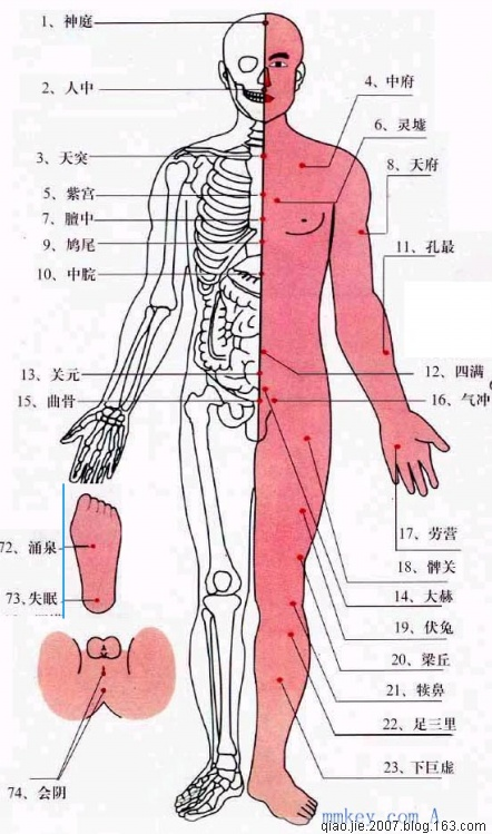 人体穴位图 - 踏雪留香 - 踏雪留香的博客