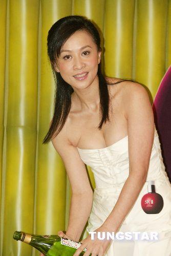 回味刘嘉玲青春性感写真(组图) - 回到过去 - 龙哥的博客