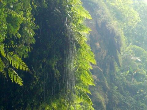 [原创]    畅游神奇的通灵大峡谷(图) - 幽兰猗猗 - 幽兰的心灵养吧