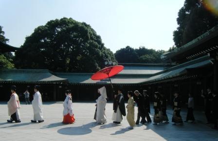 明治神宫的婚礼 - 老虎闻玫瑰 - 老虎闻玫瑰的博客